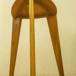 Bagrem stolica 45